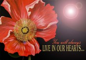 Bereavement Poppy