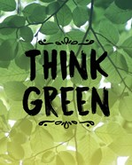 Think Green Ombre Leaves