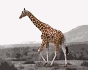 Pop of Color Lone Giraffe