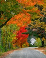 Road lined in fall color, Andover, New England, New Hampshire
