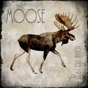 Moose Lodge 2
