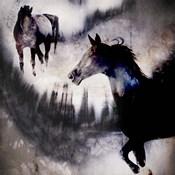 Black Mare - Dream 1