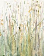 Spring Grasses I Crop