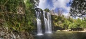 View of Waterfall, Cortes, Bagaces, Costa Rica