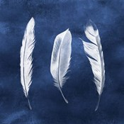 Cyanotype Feathers II
