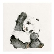 Baby Panda I
