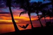 Hammock, Travel, Coral Coast, Viti Levu, Fiji