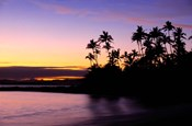 Fiji Islands, Tavarua, Palm trees and sunset
