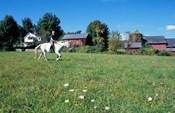 Woman Riding Horseback on Skiff Mountain, Litchfield Hills, Connecticut