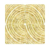 Tree Ring Triptych I