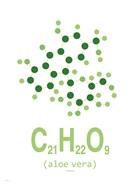 Molecule Aloe vera Clean