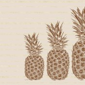 Pineapples - Right Three