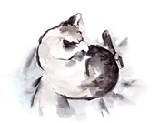 Curled Kitten