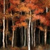 October Woods