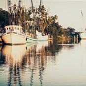 Sepia Shrimp Boats