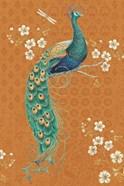 Ornate Peacock IX Spice