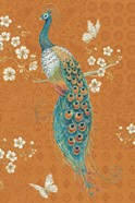 Ornate Peacock X Spice