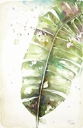 Watercolor Plantain Leaves II