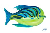 Fishy I
