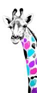 Multicolored Giraffe II