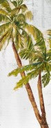 Golden Beach Palm I