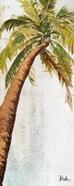 Golden Beach Palm II