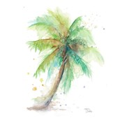 Water Palm Square