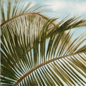 Coconut Palm over Blue I