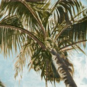 Coconut Palm over Blue III