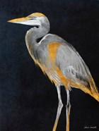 Elegant Heron I