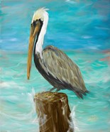 Single Pelican on Post