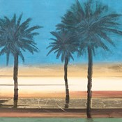 Coastal Palms II
