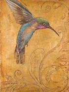 Golden Hummingbird I