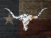 Longhorn Art With Flag