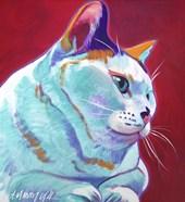 Cat - Pixie Girl