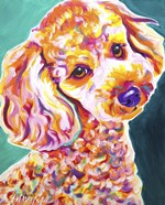 Poodle - Curly