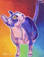 Cat - Bree