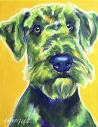 Airedale Terrier - Apple Green