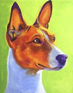 Basenji Burnt Orange
