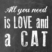 All You Need Cat