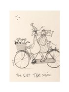 The Cat Taxi