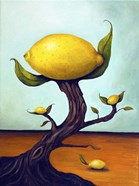 Lemon Tree Surreal
