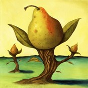 Pear Trees 2