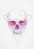 Skull In Triangle