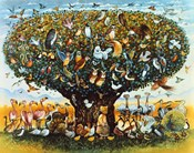 Noah And The Birds
