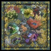 Golden Coral Seas