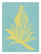 Pineapple Frais I