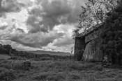 mayberry barn2BW