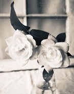 Roses In A Vase BW