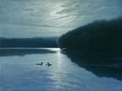 Moonlight Loons